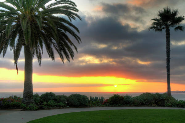 Photograph - Palm Tree Sunset by Eddie Yerkish