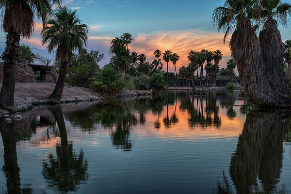 Photograph - Palm Tree Sunset Reflections by Dave Dilli