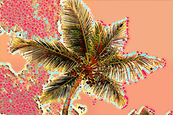 Photograph - Palm Tree Swirly by Alice Gipson