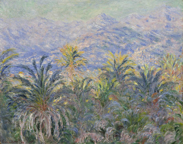 Painting - Palm Trees At Bordighera by Claude Monet
