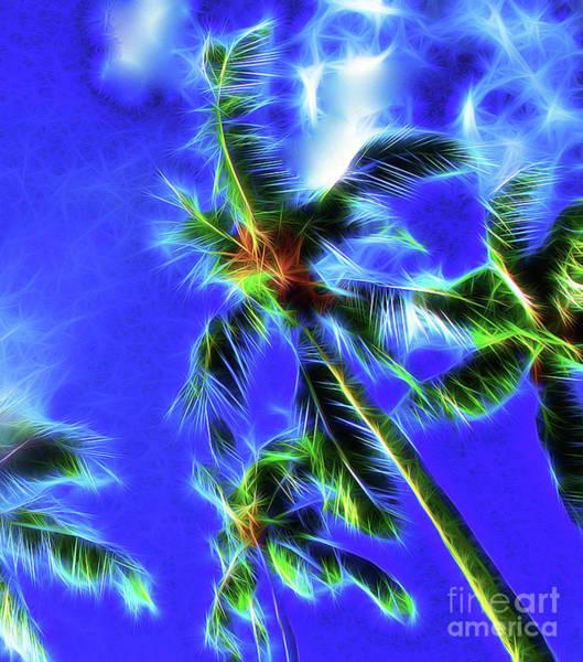 Wall Art - Photograph - Palm Trees By Starlight by Jerome Stumphauzer
