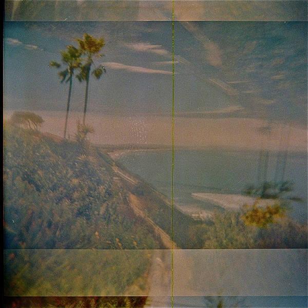Wall Art - Photograph - Palm Trees, Encinitas  by Rika Maja Duevel