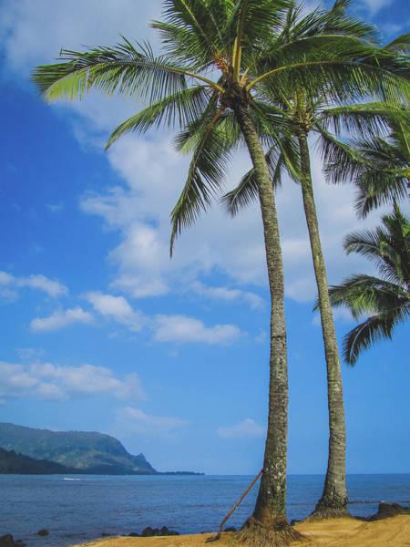 Photograph - Palm Trees On Puu Poa Beach by Andy Konieczny