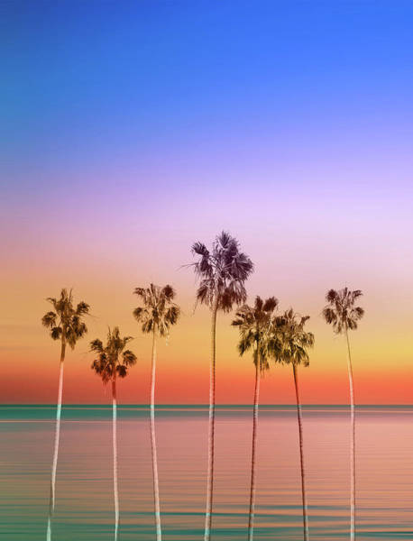 California Coast Digital Art - Palm Trees Sunset by Bekim M