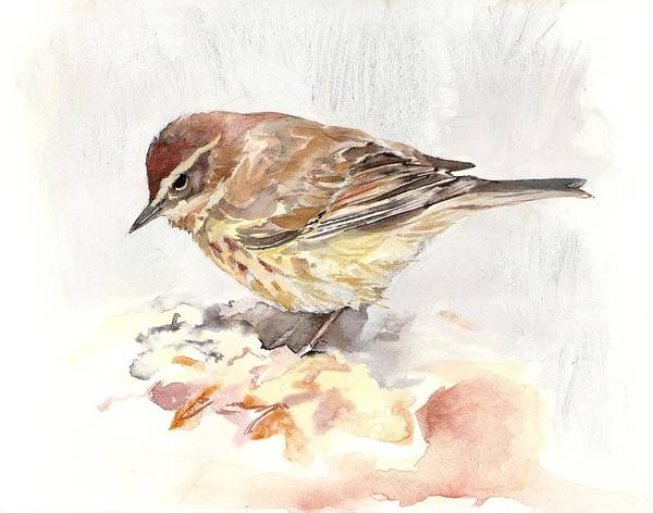 Painting - Palm Warbler by Abby McBride