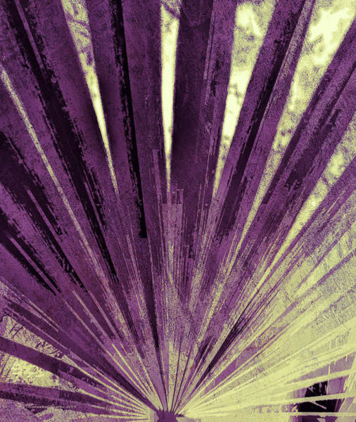 Fronds Photograph - Palmetto Abstract No. 3 by Marvin Spates