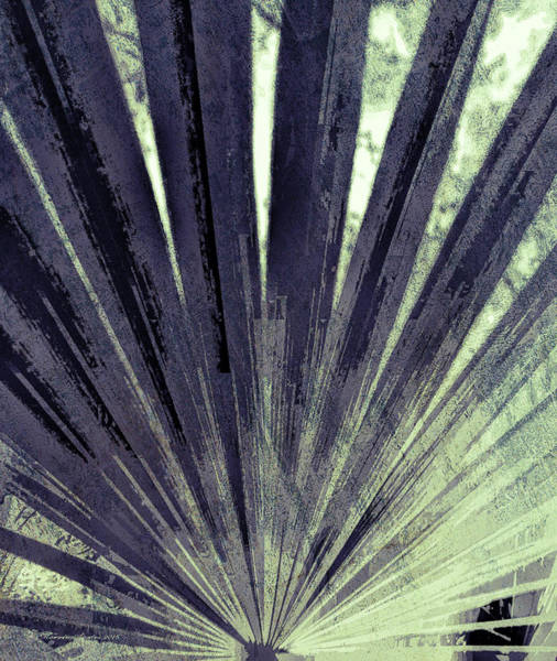 Fronds Photograph - Palmetto Abstract No. 5 by Marvin Spates