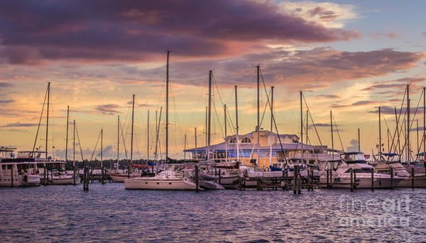 Port Of Tampa Wall Art - Photograph - Palmetto Marina Sunset by Liesl Walsh