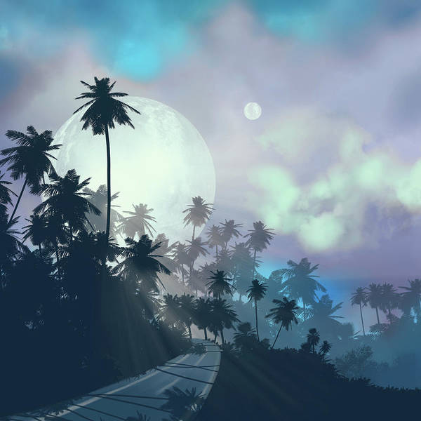 Wall Art - Digital Art - Palms And Sky 2 by Bekim M