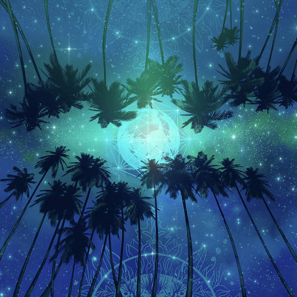 Wall Art - Digital Art - Palms And Stars by Bekim M