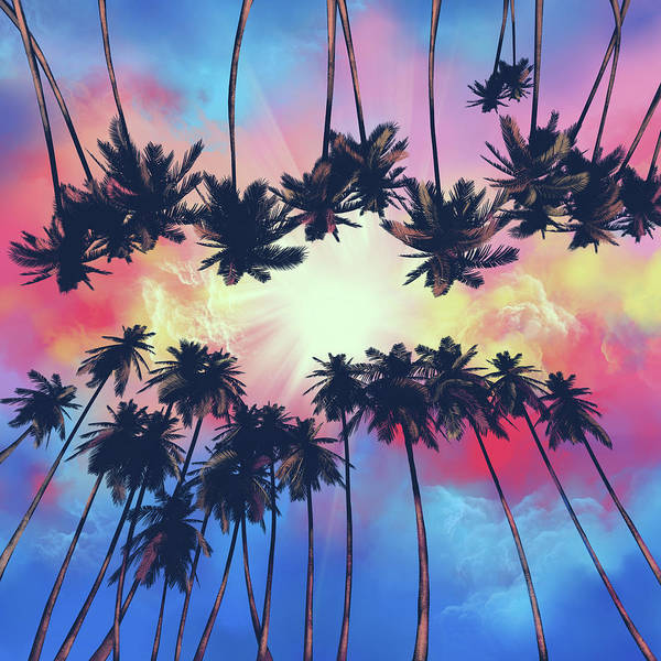 Wall Art - Digital Art - Palms And Sunset by Bekim M