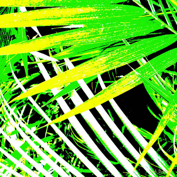 Wall Art - Photograph - Palms Away I by Herb Dickinson