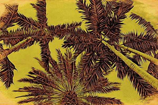 Photograph - Palms Skyview by Alice Gipson