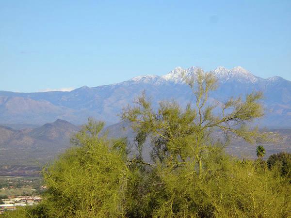 Digital Art - Palo Verde And Four Peaks by Lynda Lehmann