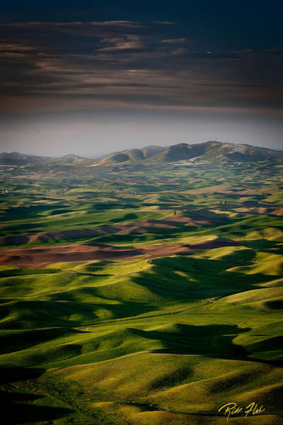 Photograph - Palouse - Afternoon Shadows by Rikk Flohr