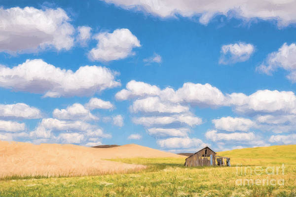 Photograph - Palouse Barn by Sharon Seaward