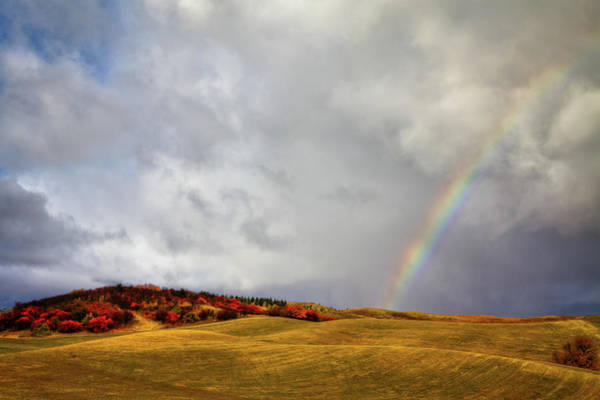 Photograph - Palouse Rainbow by David Patterson