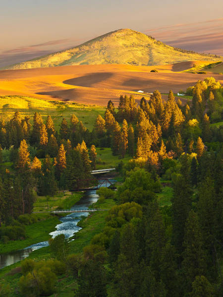 Eastern Photograph - Palouse River And Steptoe Butte At Sunrise by Alvin Kroon