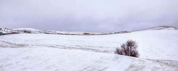 Photograph - Palouse Snow by David Patterson