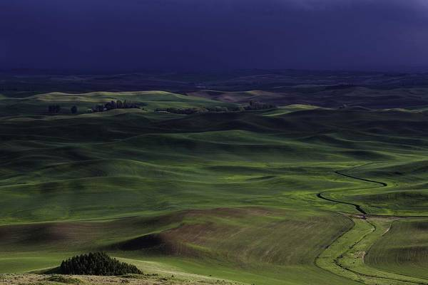 Photograph - Palouse Storm by Matt Cohen