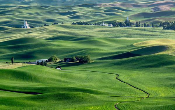 Photograph - Palouse Wheat Farming by Harold Coleman