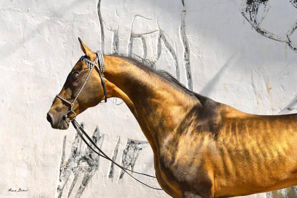 Wall Art - Photograph - Pamel-kan by Artur Baboev