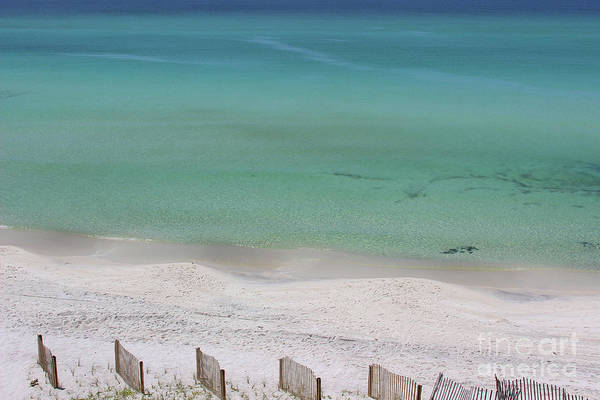 Photograph - Panama City Beach 2016 by Karen Adams