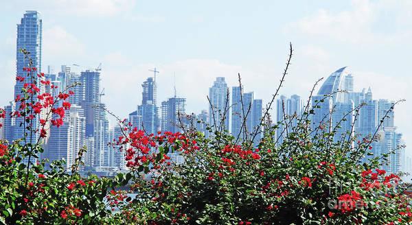 Wall Art - Photograph - Panama City Skyline 2 by Randall Weidner