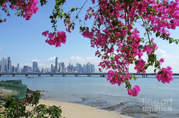 Wall Art - Photograph - Panama City Skyline 4 by Randall Weidner