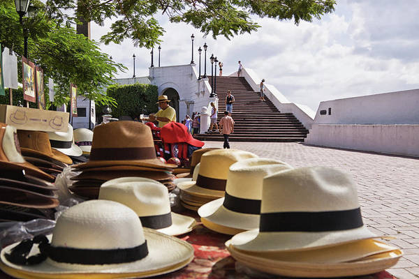 Photograph - Panama Hats by Tatiana Travelways