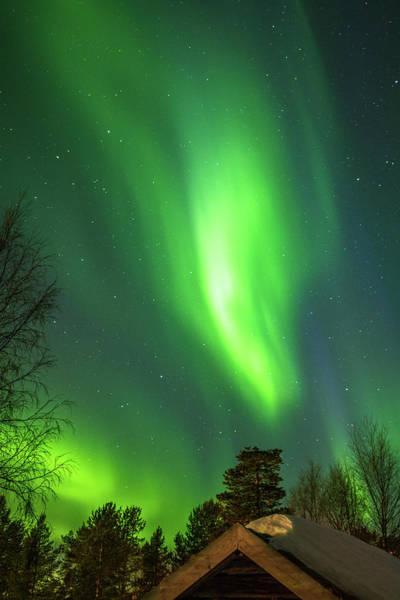 Photograph - Panda In The Lights Over Karasjok Norway by Adam Rainoff
