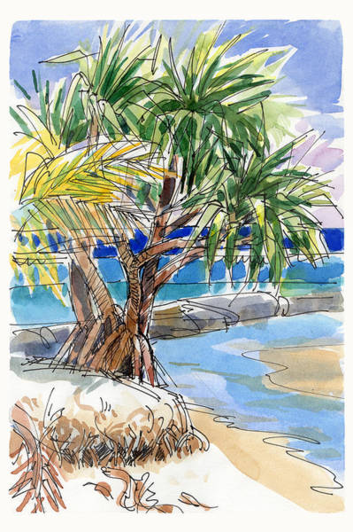 Painting - Pandanus Tree On Tapuaetai, Aitutaki by Judith Kunzle