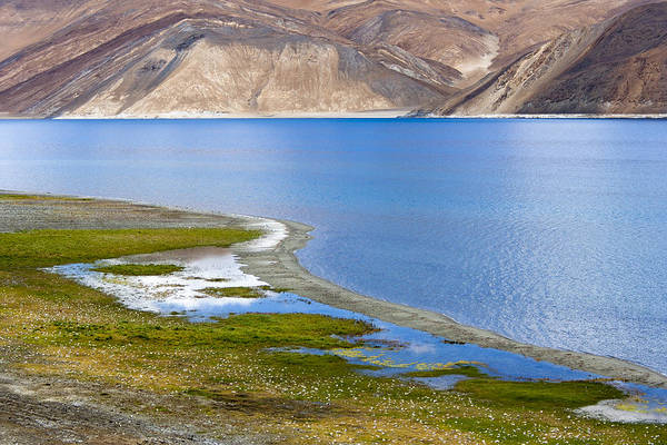 Photograph - Pangong Tso, Ladakh, 2005 by Hitendra SINKAR