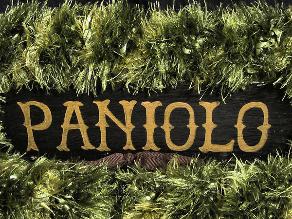 Photograph - Paniolo Pride by Pamela Walton