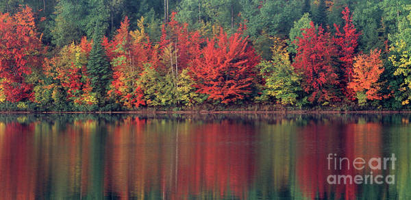 Photograph - Panorama Fall Color Moccasin Lake Upper Peninsula Mi by Dave Welling