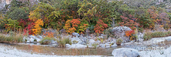Photograph - Panorama Of A Creek In Mckittrick Canyon With A Backdrop Of Bigtooth Maples On A Mountainside -texas by Silvio Ligutti