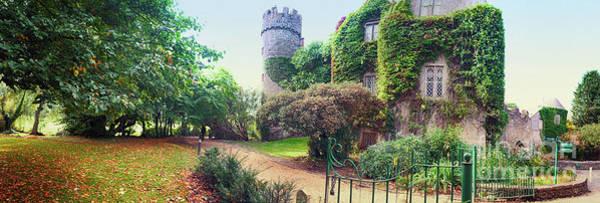 Photograph -  Panorama Of Castle Near Dublin  by Ariadna De Raadt