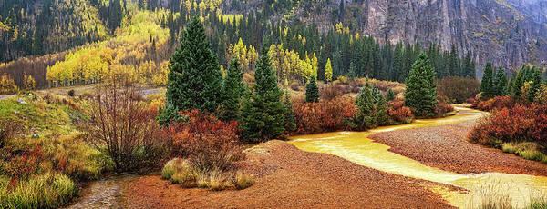 Photograph - Panorama Of Color by Leda Robertson