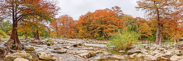 Bald Cypress Photograph - Panorama Of Guadalupe River And Bald Cypresses At Gruene - New Braunfels Texas Hill Country by Silvio Ligutti