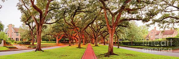 Subdivision Photograph - Panorama Of North Boulevard In Boulevard Oaks Neighborhood - Houston Texas by Silvio Ligutti