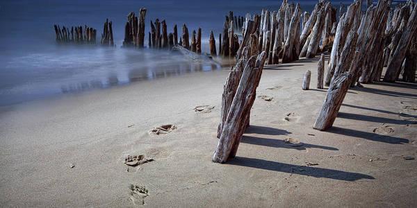 Photograph - Panorama Photograph Of Footprints Along The Beach On Lake Michigan by Randall Nyhof