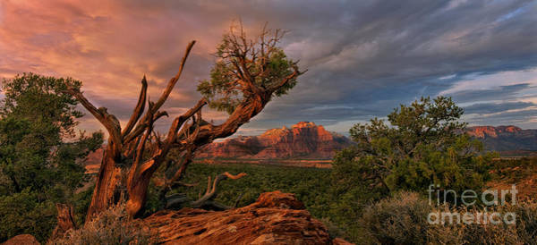 Photograph - Panorama Storm Back Of Zion Near Hurricane Utah by Dave Welling