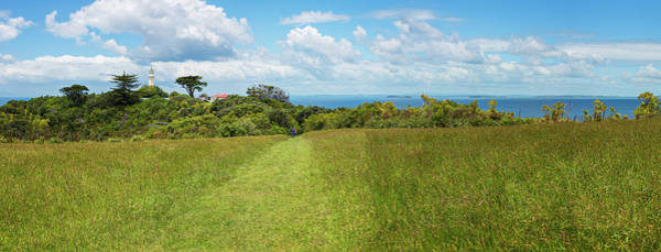 Photograph - Panorama Tiritiri Matangi New Zealand by Joan Carroll
