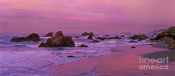 Photograph - Panoramic Sea Stacks Harris State Beach Oregon by Dave Welling