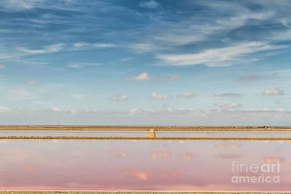 Photograph - Panoramic View Of Saline Drip - Salin De Giraud by Pier Giorgio Mariani