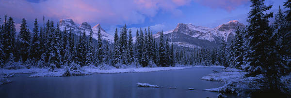 Canmore Photograph - Panoramic View Of Snowcapped Trees by Panoramic Images