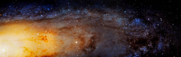 Wall Art - Photograph - Panoramic View Of The Andromeda Galaxy by Jennifer Rondinelli Reilly - Fine Art Photography