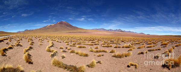 Photograph - Panoramic View Of Tatio Volcano And Atacama Desert Grassland Chile by James Brunker
