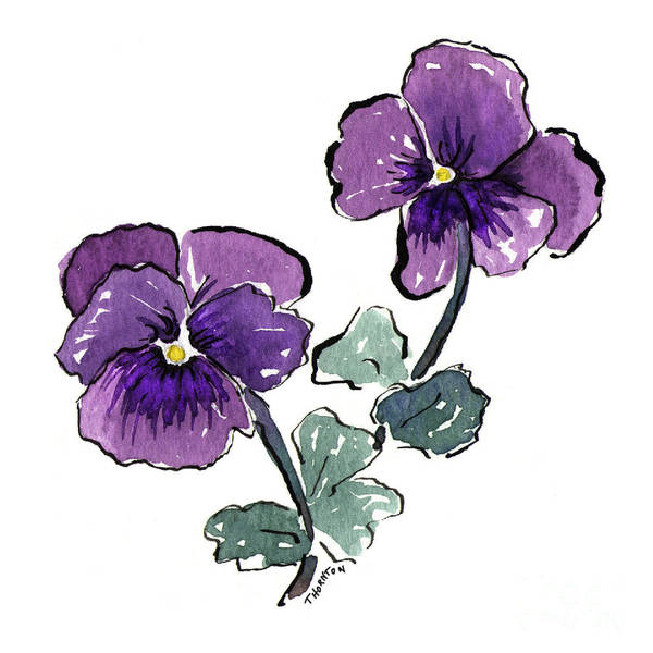 Painting - Pansies by Diane Thornton