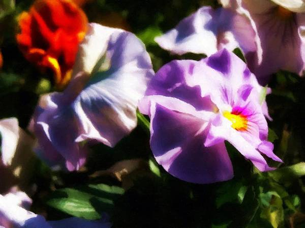 Single Leaf Mixed Media - Pansies by Abbie Shores